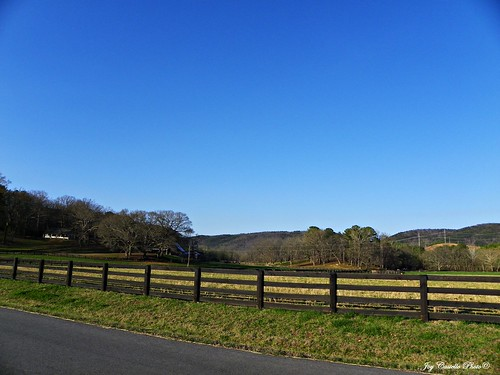 georgia fences farms murraycounty march122011