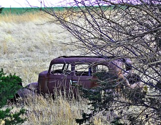 old car in the weeds