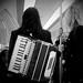 Small photo of accordeon