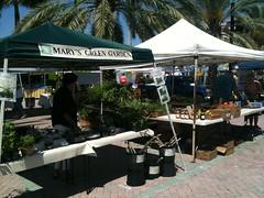 Boca Green Market