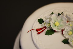 pavlova(0.0), icing(0.0), wedding ceremony supply(1.0), cake(1.0), flower(1.0), buttercream(1.0), white(1.0), sugar paste(1.0), food(1.0), cake decorating(1.0), floristry(1.0), wedding cake(1.0), petal(1.0),