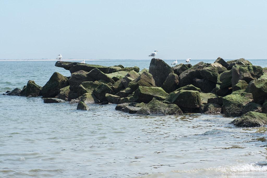 Pacific ocean waterfront in Brooklyn-14.jpg