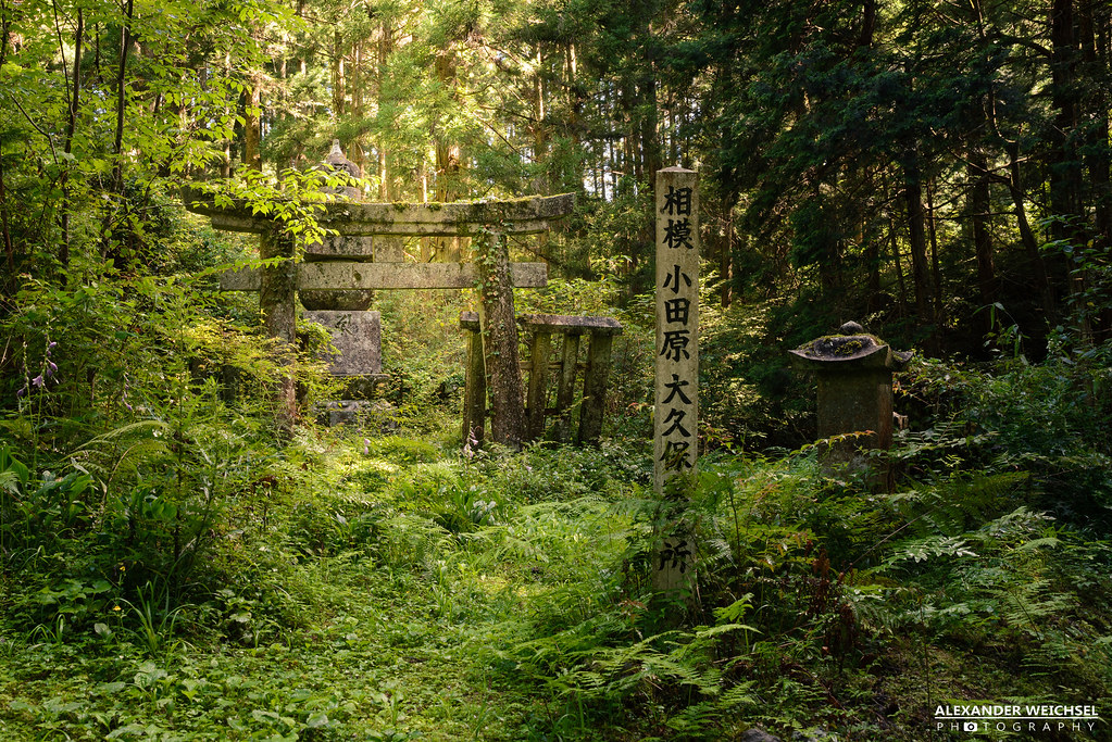 Parking and Transportation | The Westin Miyako Kyoto