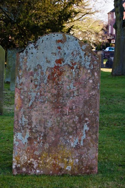 Lichen: Trysull churchyard