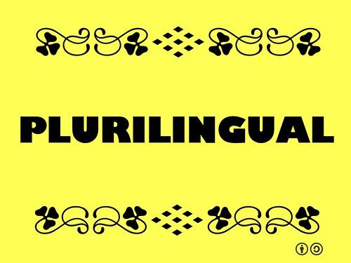 Buzzword Bingo: Plurilingual