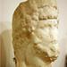 Head of the Roman Caesar Aelius, Petra Archaeological Museum, Jordan by Monopthalmos