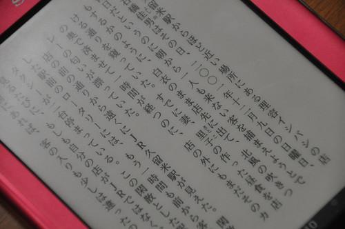 Sony Reader_013