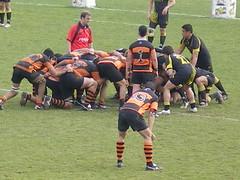 australian rules football, football player, sports, rugby league, rugby union, rugby football, rugby player, team sport, player, ball game, tournament, team,