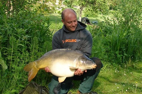 Mirror carp definition meaning english picture for Carp meaning