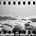 ScanFilm-Lomo-Sprocket-Rocket-Ilford-HP5-Plus-400isos-005.jpg by Fredographie