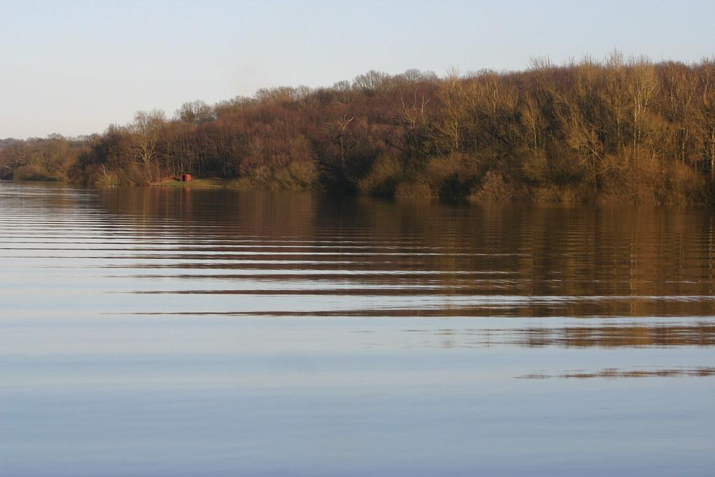 Bewl Water Ripples