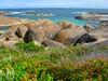 Elephant Rocks! See it?