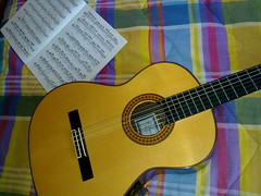 yellow(1.0), ukulele(1.0), slide guitar(1.0), acoustic guitar(1.0), cavaquinho(1.0), guitar(1.0), acoustic-electric guitar(1.0), bass guitar(1.0), string instrument(1.0),