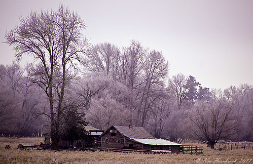 An Old Farmhouse in the Sticks  F4KV0277