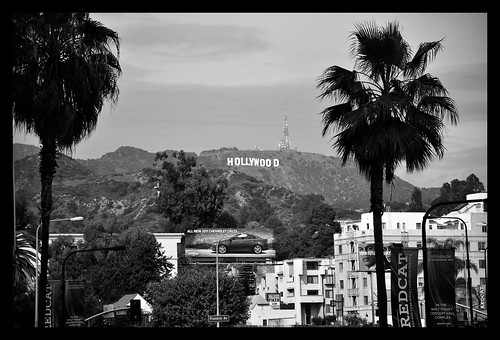 Hollywood Baby!