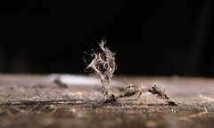 Cranite Asbestos Gasket Fibers - Detail