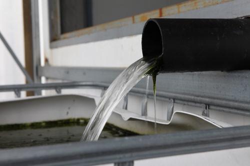 Aquaponics system help home grown farming com for Aquaponics aeration