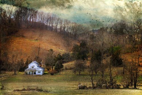 Dear West Virginia   The Revivalist