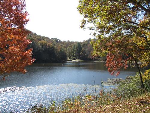 lake westvirginia plumorchard