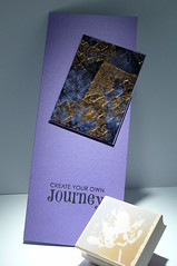 110401 Linda Twin Color Journey