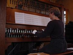 musician, musical instrument, organist, organ,