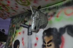 IOM-Carnival2011 056