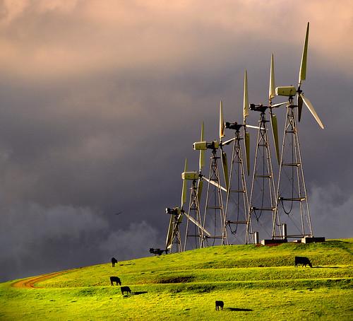 light hawk windmills altamont