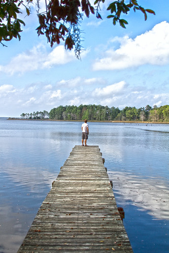 gulfofmexico gulf florida destin panhandle floridapanhandle edengardensstatepark scenic98