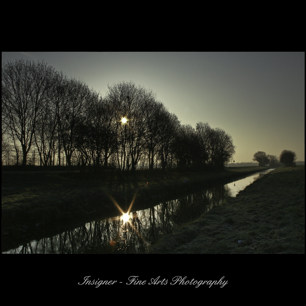 Photo:early morning awake By:Insigner