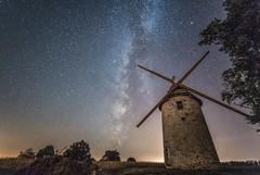 moulin baron (Sainte Cécile)