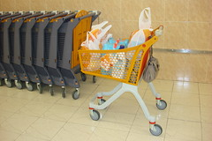 furniture(0.0), play(0.0), infant bed(0.0), baby carriage(0.0), cart(0.0), toy(0.0), baby products(0.0), vehicle(1.0), shopping cart(1.0),