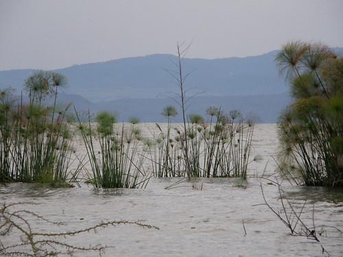 africa sunset lake water kenya safari riftvalley