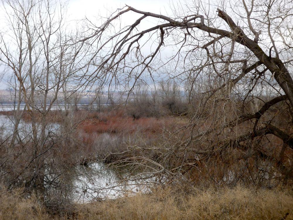 Hotels Near Deer Flat National Wildlife Refuge