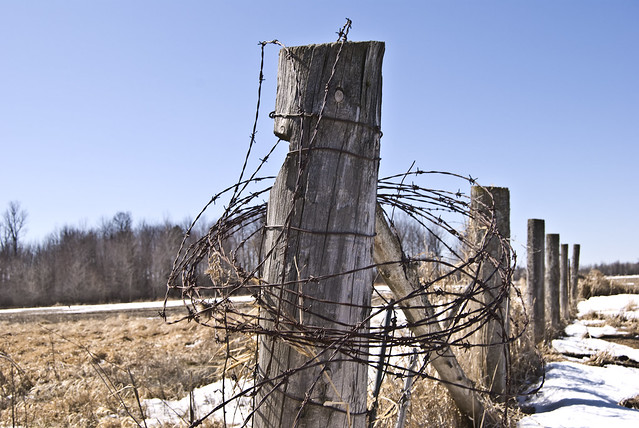 Old barbed wire fence flickr photo sharing