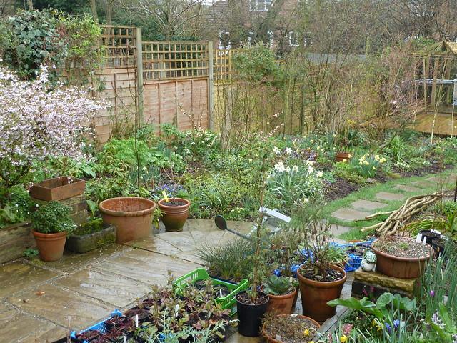 wet garden | Flickr - Photo Sharing! on Landscaping Ideas For Wet Backyard id=83682