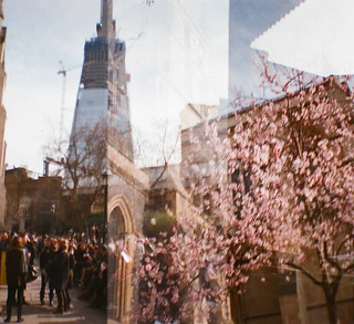 Blossoming Shard Building