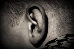 Io non ho orecchio...