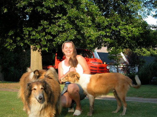 with the collies