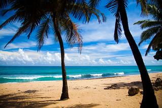 Image of La Playa @ Ocean Park Ocean Park Beach near San Juan. ocean sea beach island perfect paradise puertorico palmtrees tropical pr caribbean laplaya puertoricocaribbeanislandpuertorico