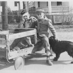 That is me petting my dog, Senator. My friend, J.W. is sharing the ride to grade school, 1952