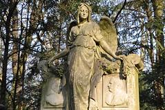 Engel am Friedhof Melaten, Köln