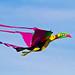 Kite Fest 2011-0085.jpg