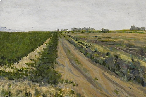 Hawkins Road Dixon CA  20cm x 30cm   oil on panel
