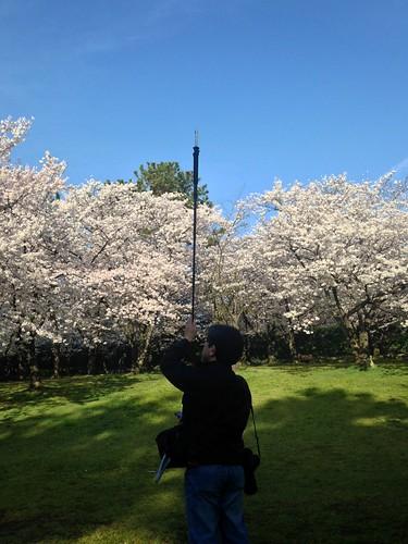 making of sakura planet