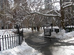 Snowy Madison Square Park I by edenpictures, on Flickr