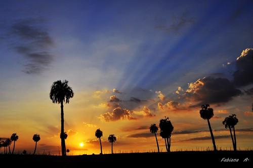 amanecer rayosdesol nikond90 rochauruguay mygearandme palmarescastillos