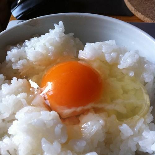 たまごかけごはん#breakfast