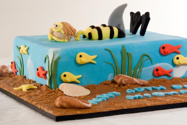 Cake Decorating Tool Icing Pen