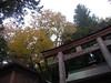 Photo:丹生川上神社下社 - Niu kawawami shrine shimosha // 2010.11.14 - 10 By Tamago Moffle