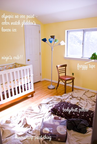 In Progress: Baby Ninja's Nursery